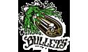 Bullets_1